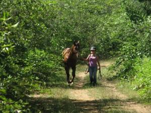 Meadowbrook Ranch 6